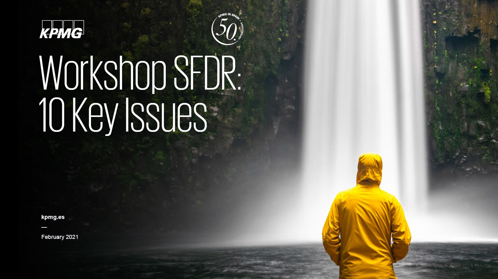Workshop SFDR document cover
